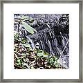 Beauty And The Rapids Framed Print