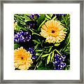 Beauty In The Gardem Framed Print