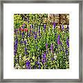 Becker Vineyards' Flower Garden Framed Print