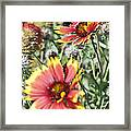 Bee And Flower Framed Print