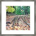 Belgrave Puffing Billy Railway Track Framed Print