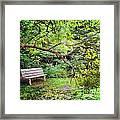 Bench In Park  Framed Print