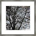 Between Heaven And Earth Expressionism Art Framed Print