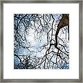Between Times Framed Print