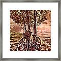 Bicycle In The Park Framed Print