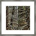 Billions Of Branches Framed Print