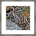 Bird By The Water Framed Print