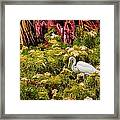 Bird In The Blooms Framed Print