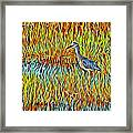Bird In The Reeds Framed Print