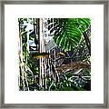 Bird - National Aquarium In Baltimore Md - 12121 Framed Print