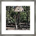 Birdhouses In The Trees Framed Print