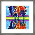 Bison Reflections Framed Print
