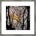 Black Ink Light  Framed Print