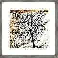 Black White And Sepia Tones Silhouette Tree Painting Framed Print