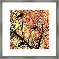 Blackbirds In A Tree Framed Print