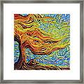 Blazing In The Light Framed Print
