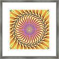 Blooming Seasons Kaleidoscope Framed Print by Derek Gedney