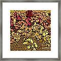 Blossoms And Tree In Yellow And Red Framed Print