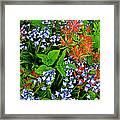 Blue And Red Flowers In Kuekenhof Flower Park-netherlands Framed Print