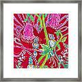 Blue Bird Trio And Heart Framed Print