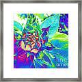 Blue Sunflower Framed Print