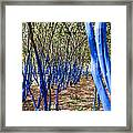 Blue Trees In Nature Framed Print