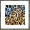 Blue Water 2 Framed Print