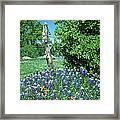 Bluebonnet Scene Framed Print