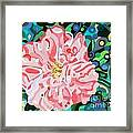 Blushing Camellia Framed Print by Deborah Glasgow