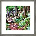 Boulder Forest Framed Print