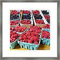 Bounty Of Berries Framed Print