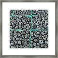 Bounty Of Blueberries Framed Print