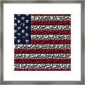 Boxed Flag Framed Print
