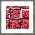 Boxes Of Fresh Red Raspberries Framed Print