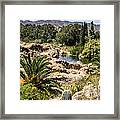 Boyce Thompson Desert Vista Framed Print