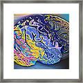 Brain Colours Framed Print by Soumya Bouchachi