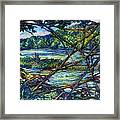 Brances Over The New River Framed Print