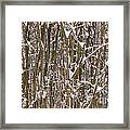 Branches And Twigs Covered In Fresh Snow Framed Print