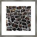 Breaking Dawn Part 2 Pile Of Pics Framed Print