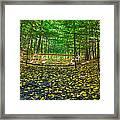 Bridge In Gosnell Big Woods Framed Print