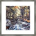 Morning Bridge In Woods Framed Print
