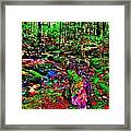 Brook Texture Z 11 Framed Print