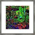 Brook Texture Z 5 Framed Print