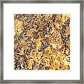 Brown Stone Abstract Framed Print