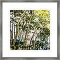 Bryant Park Midtown New York Usa Framed Print