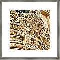 Buffalo In Baffalo Framed Print