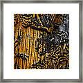Burnt Beetle Maze  #9991 Framed Print