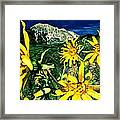 Burst Of Summer Framed Print
