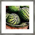 Bushel Full Of Melons Framed Print