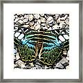 Butterfly Amongst Stones Framed Print
